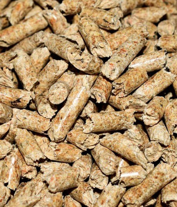 pellets-4844847_640